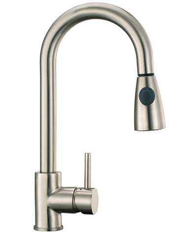 Aolijie Sanitary Brushed Nickel Kitchen Faucet With Shower Head (88017)