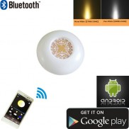 NEW- Bluetooth Version- LED Ceiling Light