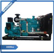 200kw Cummins Biomass Gas Power Generator Set/Gas  Manufacturer