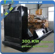 300kw Biomass Gas Power Generator Set/electricity  Manufacturer