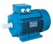 Y2 Series Totally Enclosed Motor Manufacturer