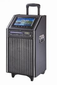 10 Inch Trolley Speaker With Battery DVD Player An Manufacturer