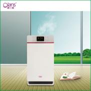 High Quality Commercial Hepa Air Purifier With Ion Manufacturer