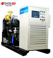China Factory 40KW Low Biogas Generator Cost Manufacturer