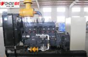 FENGHUO Good Quality 100KW Biogas Generator Price  Manufacturer
