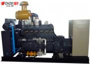 FENGHUO High Quality 80KW Biogas Generator Cost Manufacturer