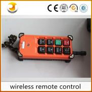 High Quality Remote Control For Crane Or Other Equ Manufacturer