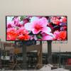 Lamp P10 P16 Outdoor Brilliant Color LED Display S Manufacturer
