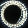 5050  SMD  LED Strip  (Silicon Sealant Version- W Manufacturer