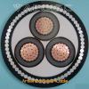 Armored  Power  Cable  Manufacturer