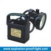 BW6200E/F Portable  Explosion - Proof  Strong  Lig Manufacturer