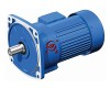 G3 Helical Geared Motor