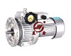 Udl Series Stepless Speed Variators Manufacturer