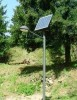 Solar  Pathway  Light  Manufacturer