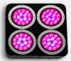 LED Grow Light  Manufacturer