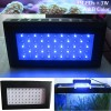 High Power 3W LED Aquarium Light , Dimmable, White Blue Mixed For Marine /Fresh Tank