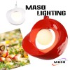 Indoor Pendant Apple Type Resin Lamp Energy Save P Manufacturer