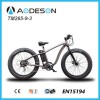 Beach Cruzer Electric Bicycle 2015 with Samgsung B Manufacturer