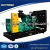 Heavy Duty Open Type  Diesel Generator  with CE an Manufacturer
