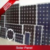 Mono and Poly Solar Panel with Different Customized Rated Power
