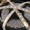 5050 60 Leds LED Strips
