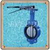 Cast Iron Butterfly Valve Manufacturer
