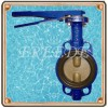 NO PIN Butterfly Valve Manufacturer