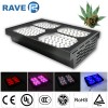 LED Grow Light  Sp600 Full Spectrum with Smart Co Manufacturer