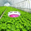 LED  Grow  Lights  For Hydroponics Plants, LED  O Manufacturer