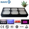 LED Grow Lights  900W 300*3W Dual Veg/Flower Spec Manufacturer